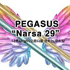 [히모리]드라이버 신제품 PEGASUS Narsa29 _ 초경량 샤프트 for Gold senior and Lady